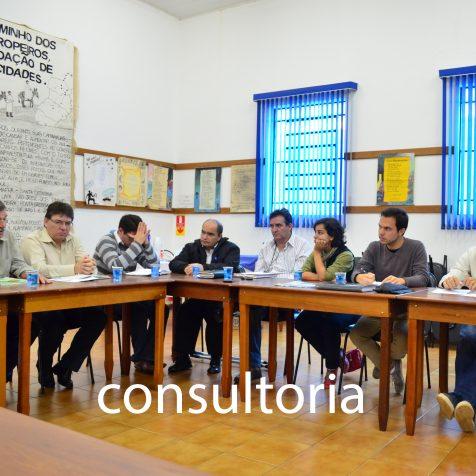 consultoria4